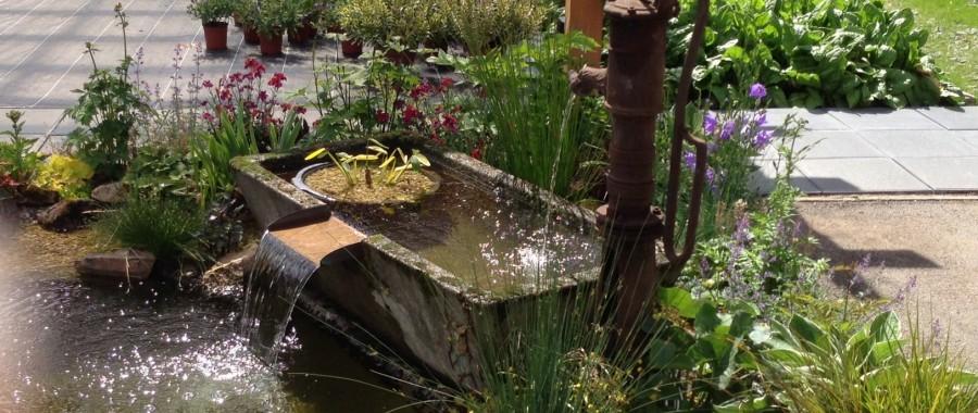 Bassin des Jardins de Vanteaux : Arrolimousin a apporté des solutions pour faire cohabiter la technique et l'esthétisme
