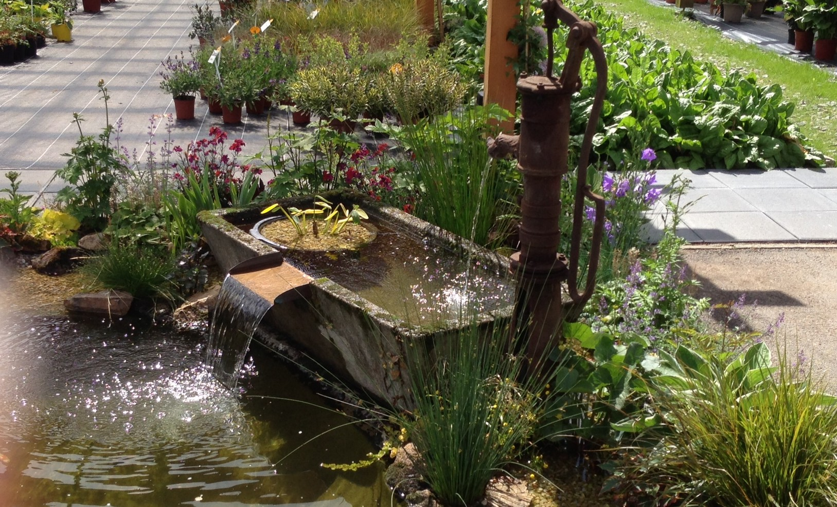 Bassin des jardins de vanteaux 87 arrolimousin for Bassin de jardin d occasion